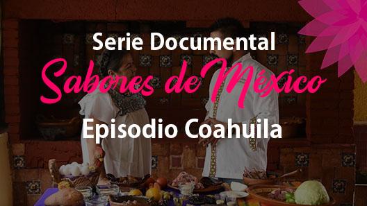 Episodio 10 Coahuila, Serie documental
