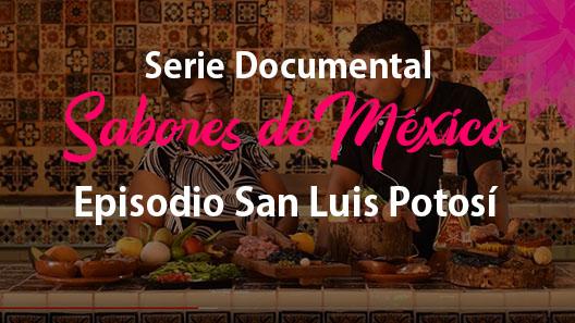 Episodio 3 San Luis Potosí, Serie documental