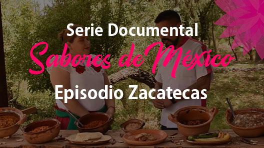 Episodio 4 Zacatecas, Serie documental