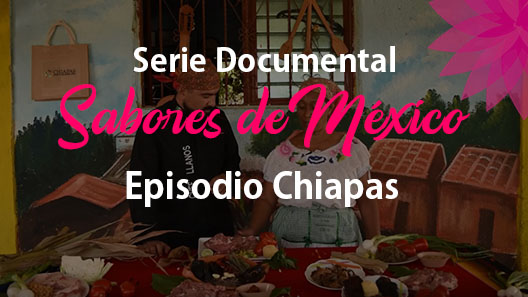 Episodio 5 Chiapas, Serie documental