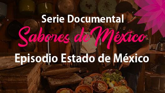 Episodio 6 Estado de México, Serie documental