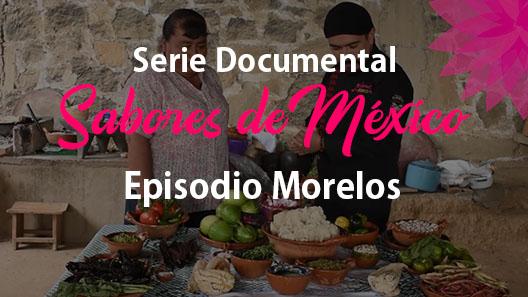 Episodio 7 Morelos, Serie documental