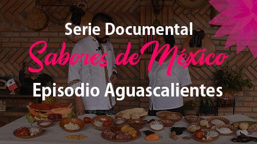 Episodio 8 Aguascalientes, Serie Documental Sabores de México 2 vistas •21 jul. 2020