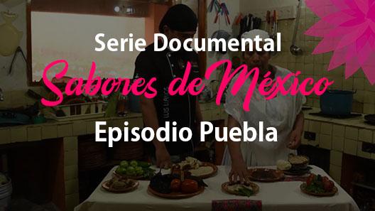 Episodio 9 Puebla, Serie documental