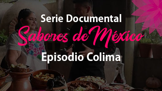 Episodio 1 Colima, Serie documental