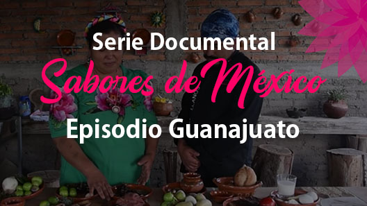 pisodio 2 Guanajuato, Serie documental